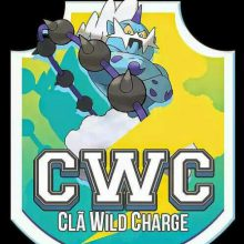 Logo do grupo Wild Charge